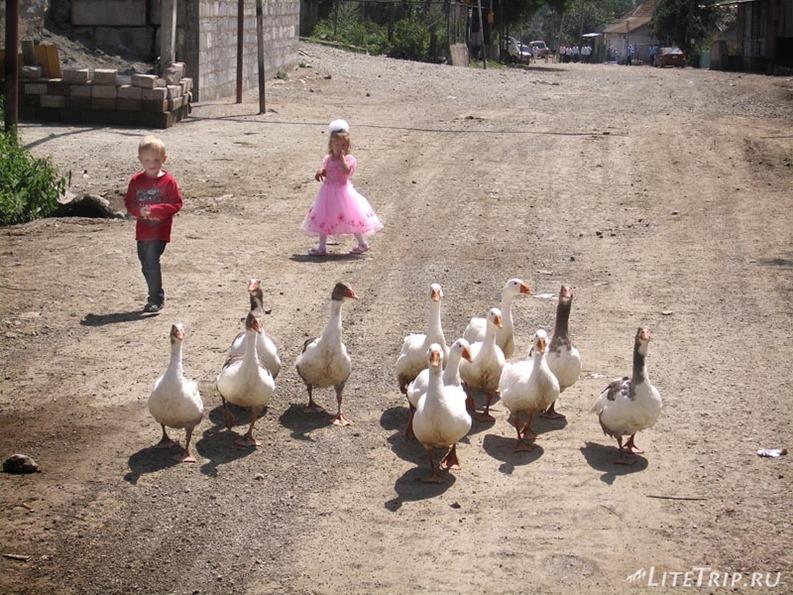 Армения. Село Фиолетово - дети.