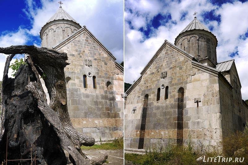 Армения. Дилижан - обгоревшее дерево монастыря Агарсин.