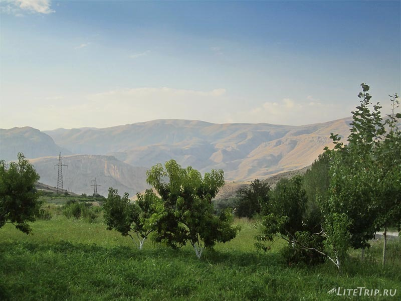 Армения. Фруктовые плантации на трассе Ереван - Ехегнадзор.