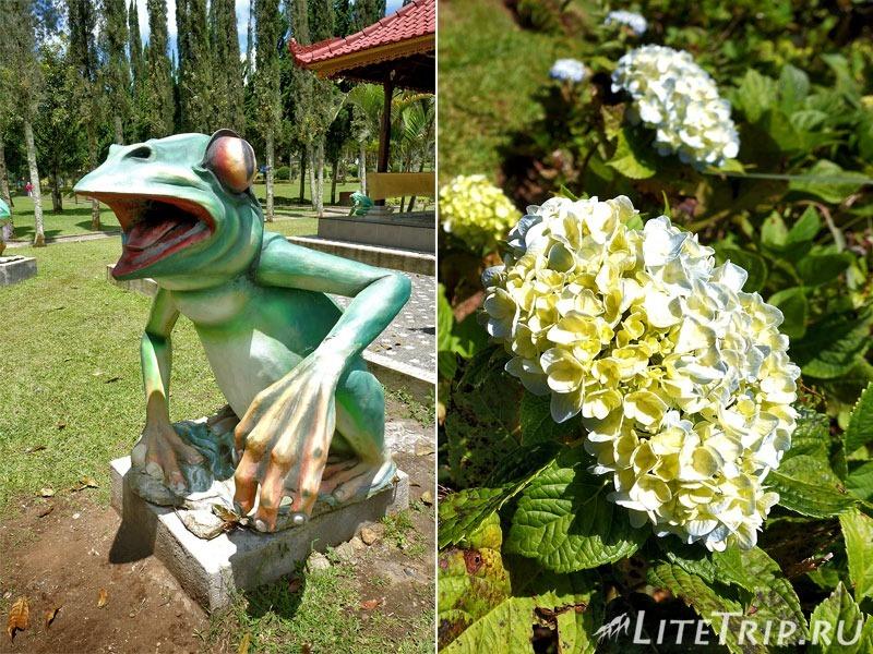Индонезия. Бали. Храм Улун Дану. Ботанический сад.