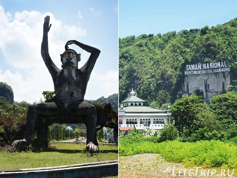 Индонезия. Сулавеси. Национальный парк Бантимурунг - макака на въезде.