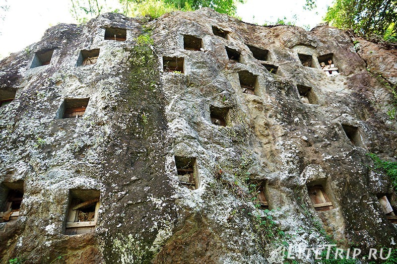 Индонезия. Сулавеси. Тана-Тораджа. Лемо. Захоронения в скале.