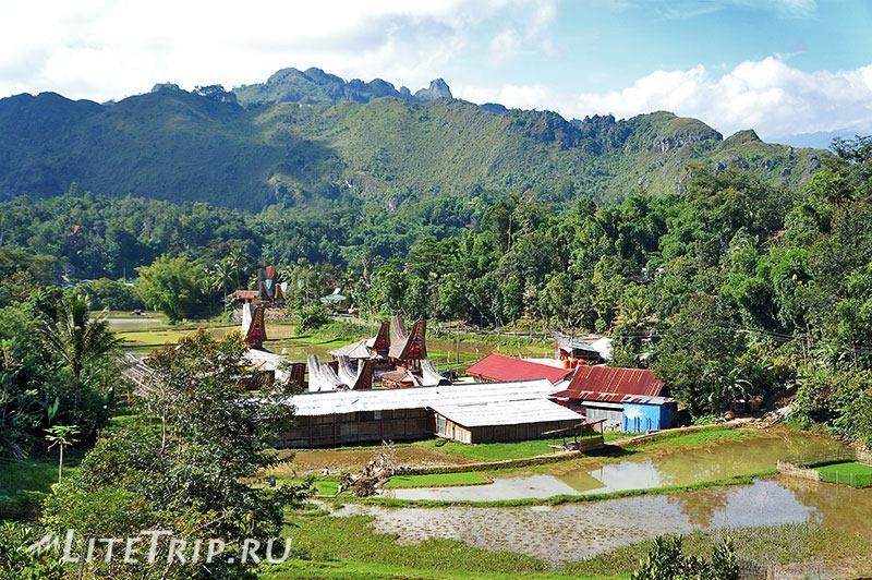 Индонезия. Сулавеси. Тана-Тораджа. Место для проведений похоронных церемоний.