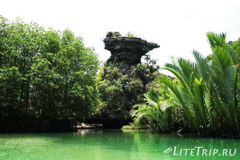 Индонезия. Сулавеси. Рамман-Рамман. Виды по пути