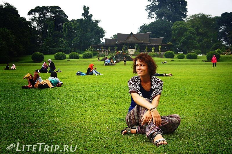 Индонезия. Ява. Богор. Ботанический сад - на травке.