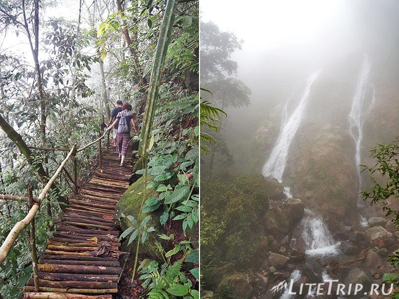 Индонезия. Ява. Богор. Заповедник горы Салак - подъем в тумане.