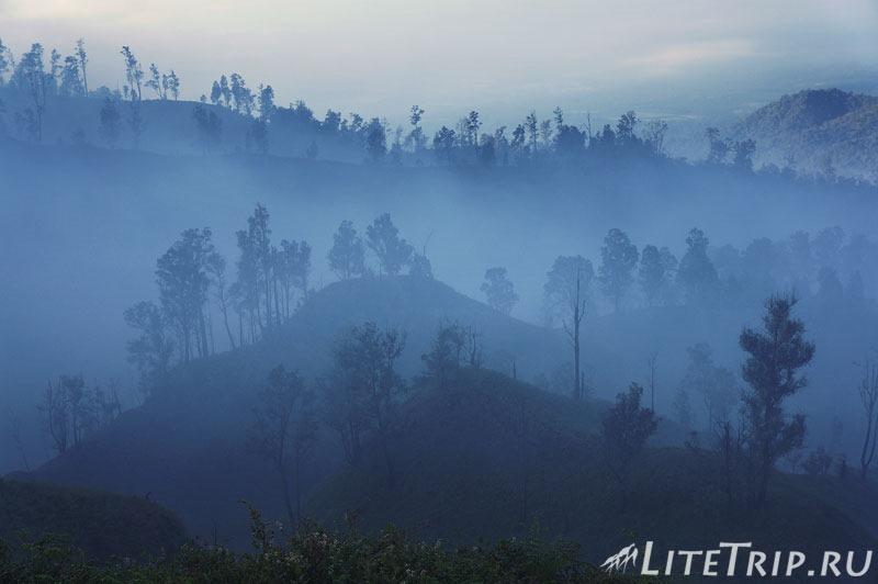 Индонезия. Ява. Вулкан Иджен. Лес в тумане