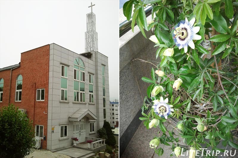 Южная Корея. Чангван - церковь.