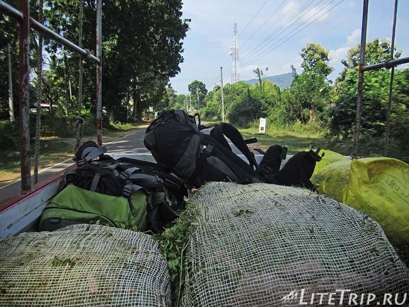 Шри-Ланка. Автостопом в Катарагаму в кузове с травой.
