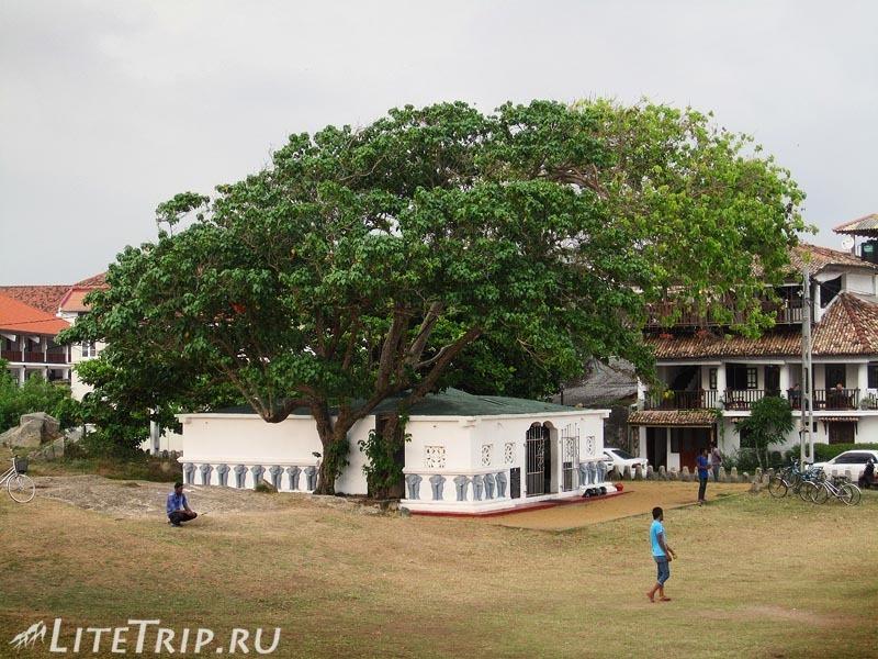 Шри-Ланка. Форт Галле - футбольное поле.