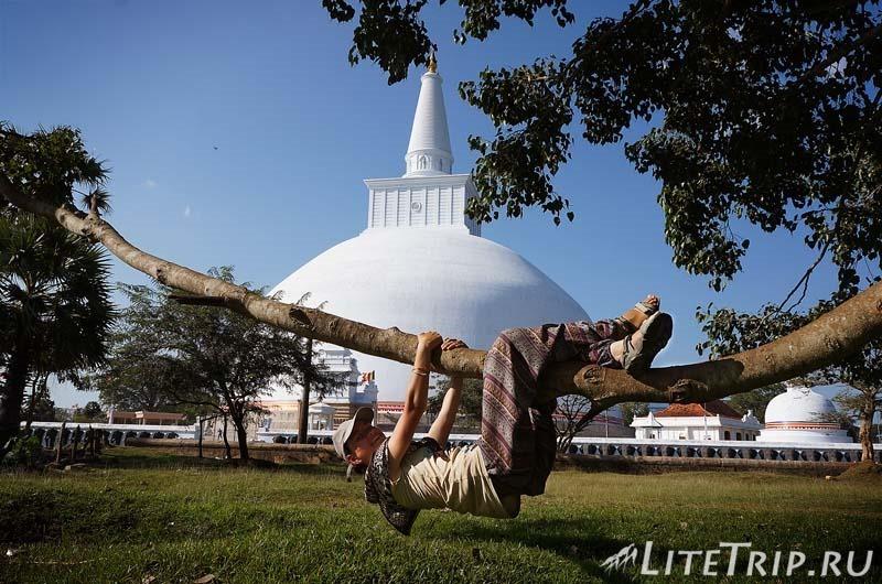 Шри-Ланка. Анурадхапура. Ступа Руванвелисая (Ruvanvalisaya) и Мила.