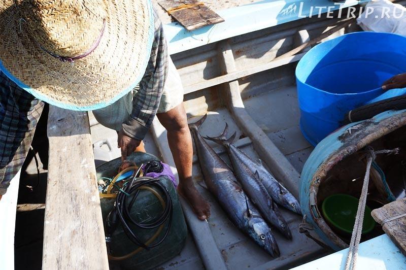 Шри-Ланка. Тринкомале - рыбацкая лодка.