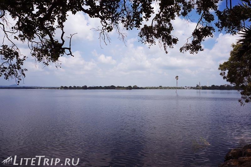 Шри-Ланка. Полоннарува - озеро.