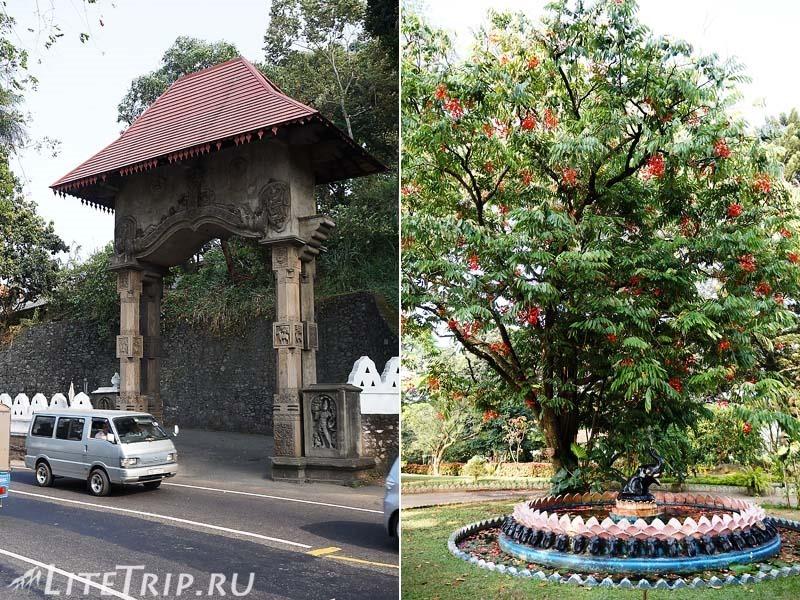 Шри-Ланка. Канди - парки.