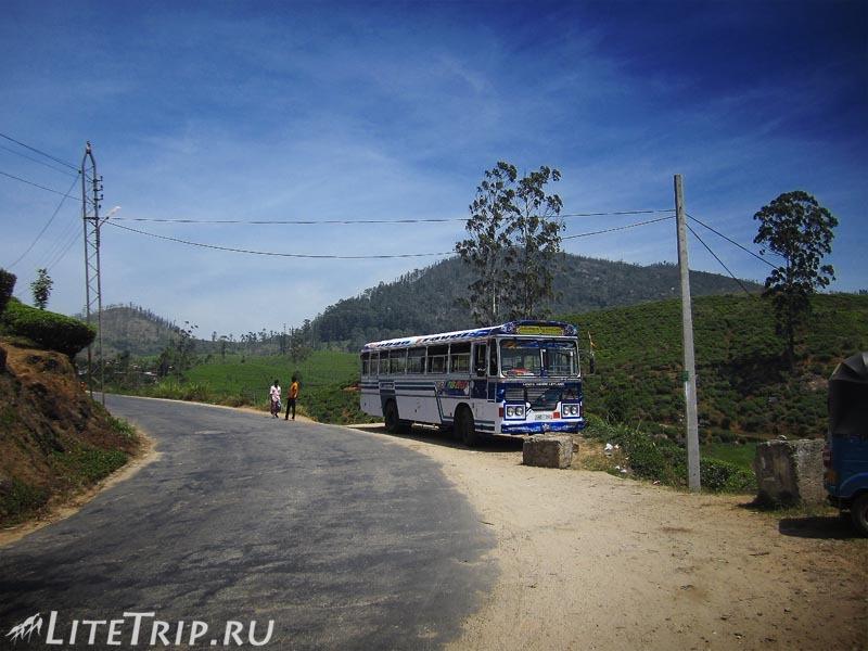 Шри Ланка. Добраться автобусом до Пика Адама.