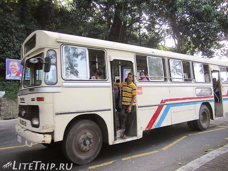 Шри-Ланка. Транспорт - автобусы.