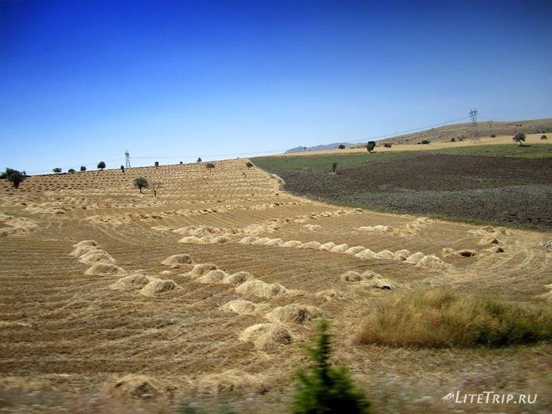 Турция. Пейзажи полей и полупустыни.