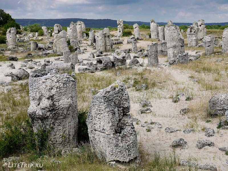 Болгария. Варна - Каменный лес.