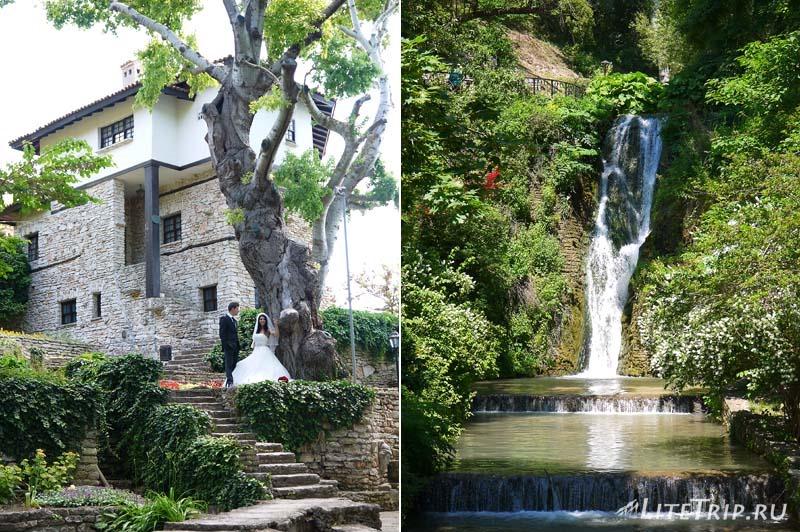 Болгария. Балчик - свадьба в Ботаническом саду.
