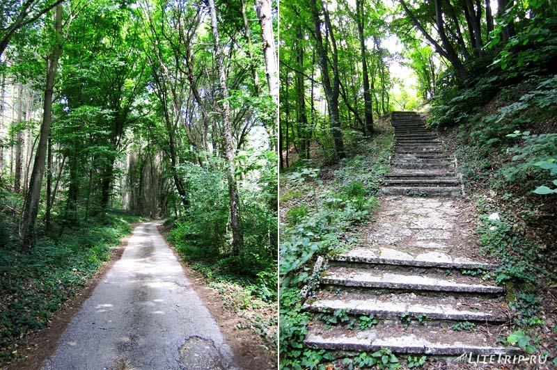 Болгария. По дороге через лес к монастырю Аладжа.
