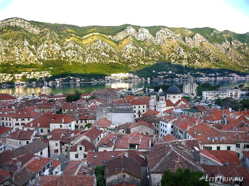 Черногория. Крепость в Которе - крыши домов.