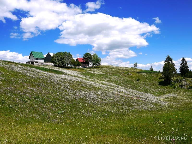 Черногория. Парк Дурмитор - село Босача.