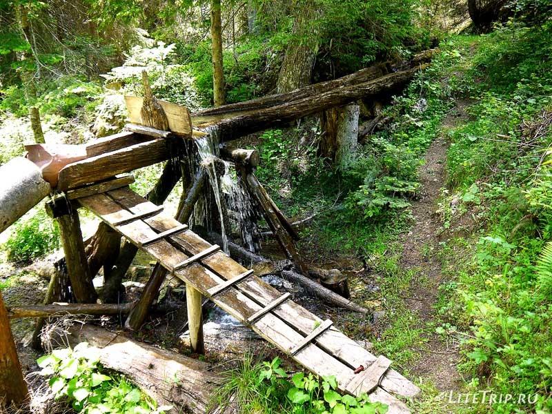 Черногория. Парк Дурмитор - лесной родник.