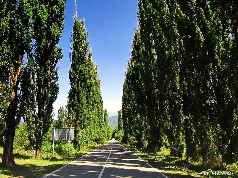 Грузия. Дорога к монастырю Некреси.