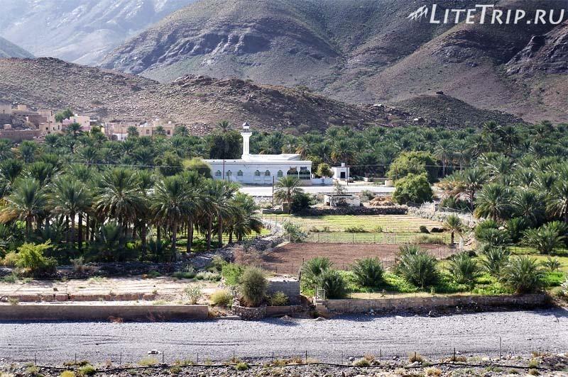 Оман. Аль Аин - пересохшее русло реки.