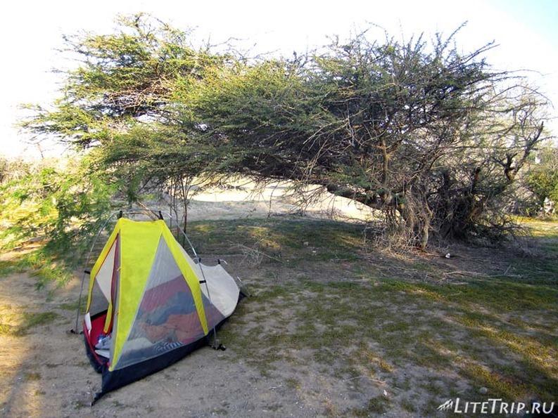 Оман. Палатка близ города Сохар.