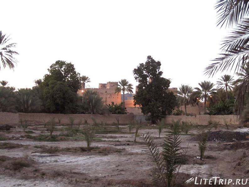 Оман. Мудариб - парк города.