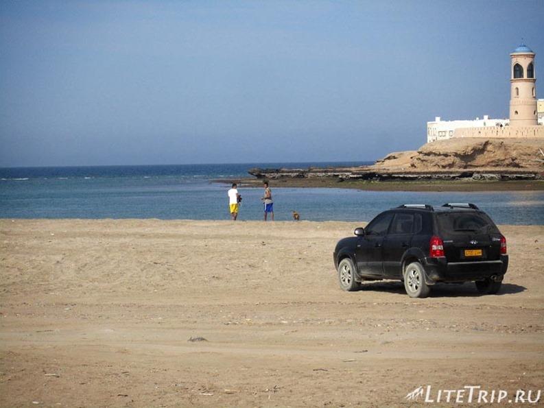 Оман. Город Сур - петухи на прогулке.