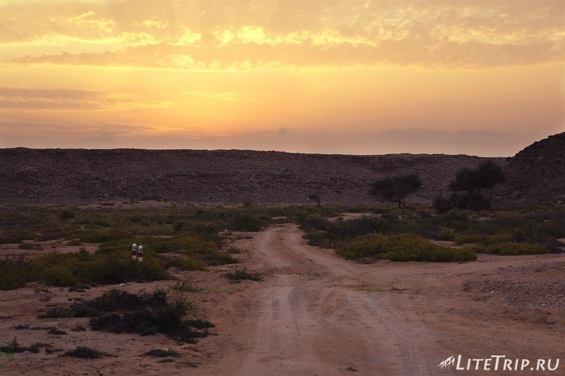 Оман. Рас Аль Джинз. Бесплатный черепаший пляж - дорога.