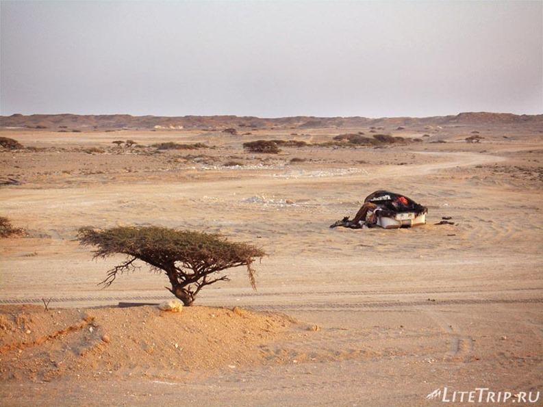 Оман. Дорога в Салалу - лодка в пустыне.