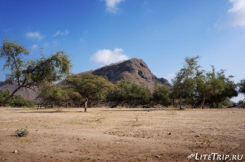 Оман. Салала. Вади Дарбат (Wadi Darbat).