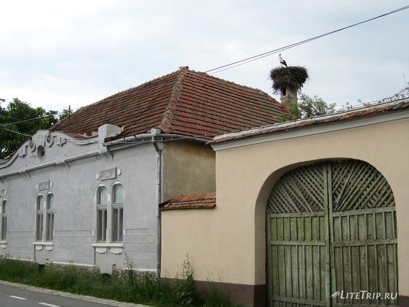 Румыния. Гнезда аистов на домах.
