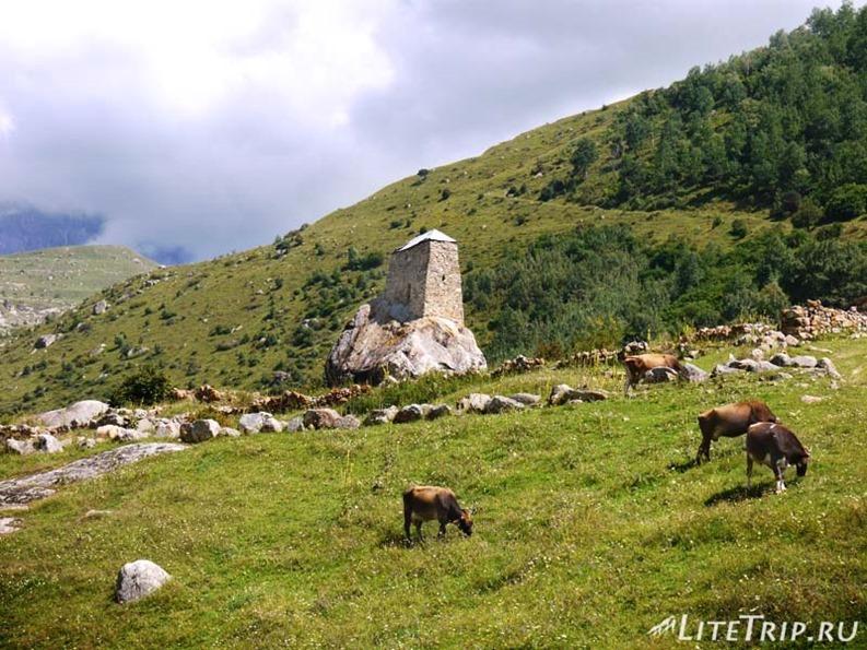 Россия. Верхняя Балкария - башня на камне и коровы.