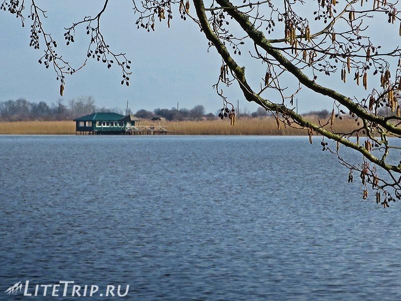 Калининград. Куршская коса. Высота Мюллера - озеро Чайка.