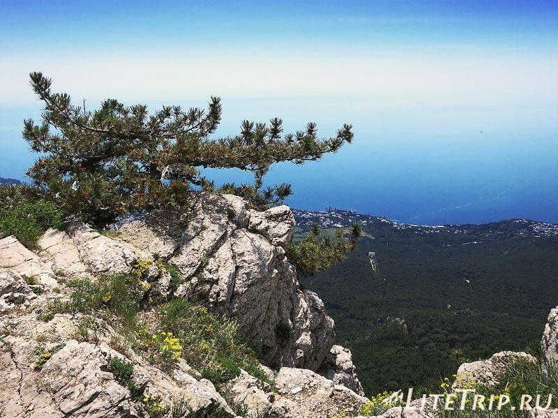 Крым. Ялта. Гора Ай-Петри - на краю обрыва.
