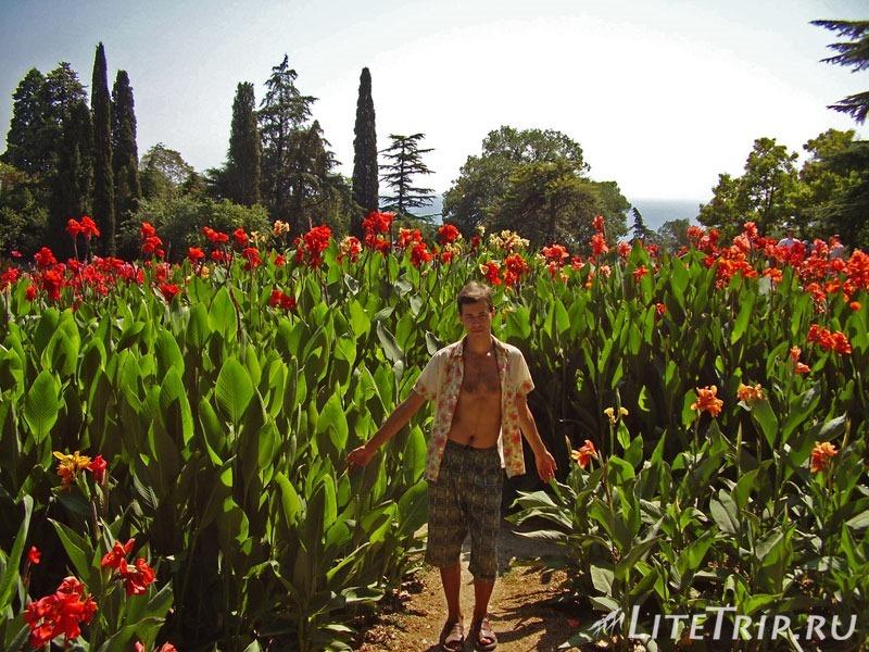 Крым. Никитский ботанический сад. Андрей в цветах.