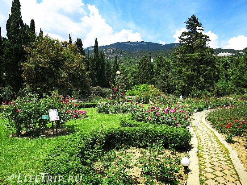 Крым. Никитский ботанический сад. Беседки вдали.