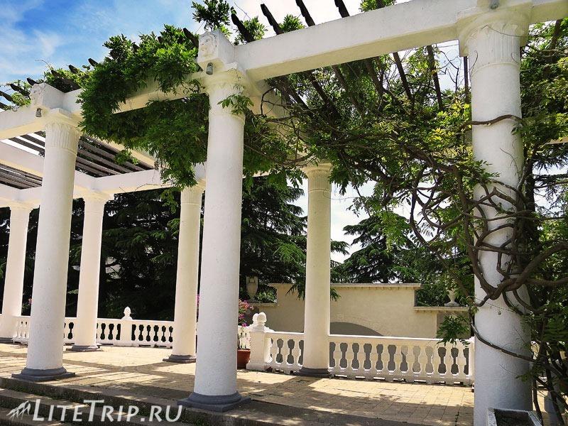 Крым. Никитский ботанический сад. Колоннада.