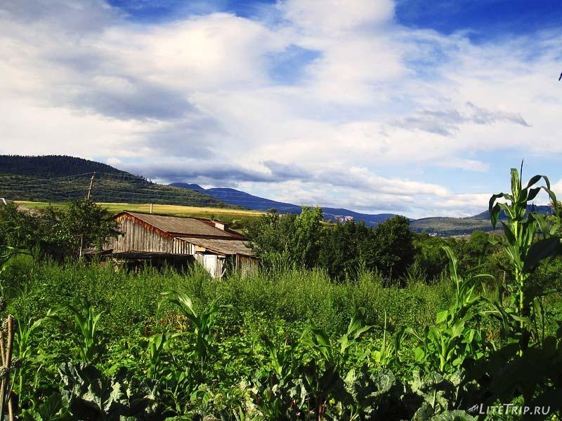 Грузия. Деревня Вале.