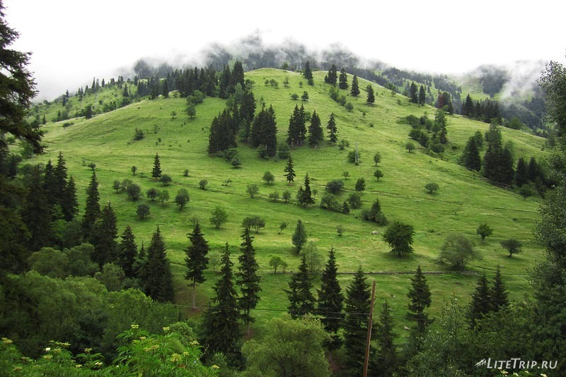 Турция. По дороге на Ардахан - зеленые пейзажи.