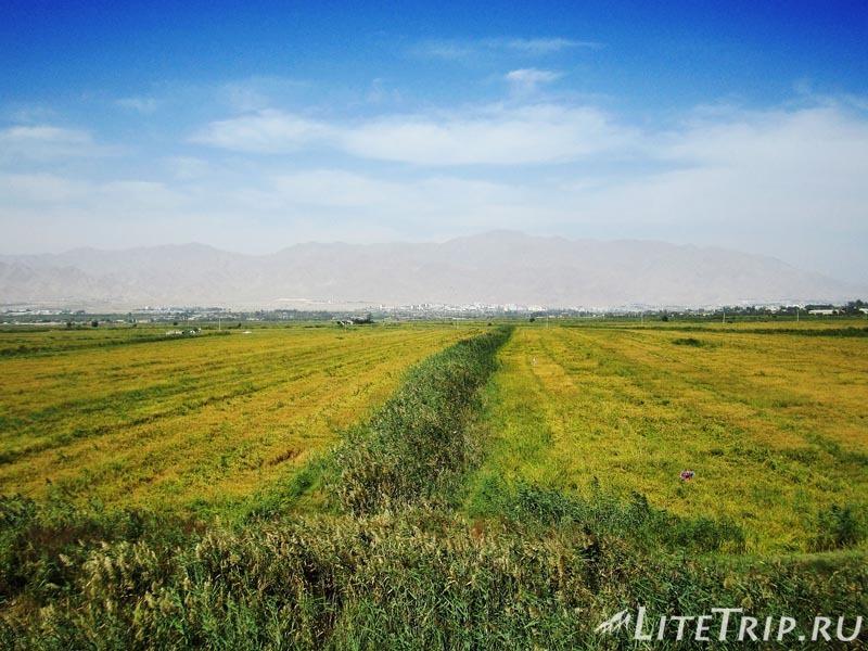Таджикистан. Поля.