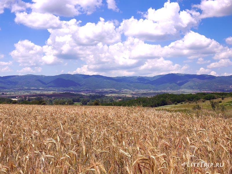 Сербские поля недалеко от Вранье.