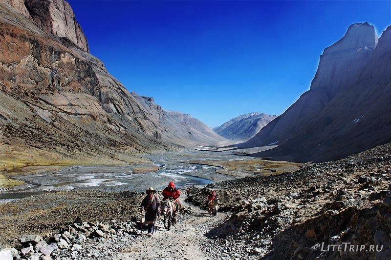 Тибет Внешняя кора вокруг Кайласа. Лошади.