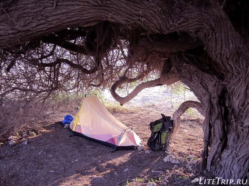 """Безопасное место для палатки - территория с """"крышей""""."""