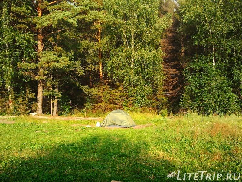 Где безопасно поставить палатку в лесу.