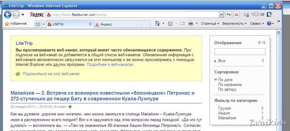 Подписка через Internet Explorer. Окно подписки.